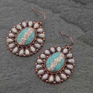 Jewelry - Western Stone Fish Hook Earrings